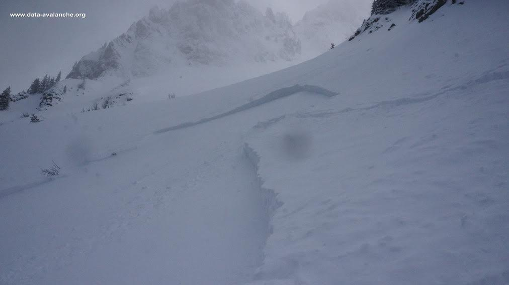 Avalanche Chablais, secteur Pointe de Chavasse - Photo 1